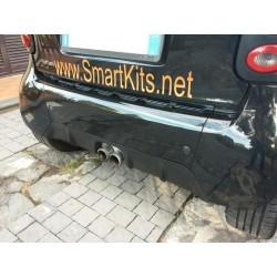 Diffusore posteriore SKs ForTwo 450