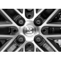 BRABUS wheel bolt covers Smart 453