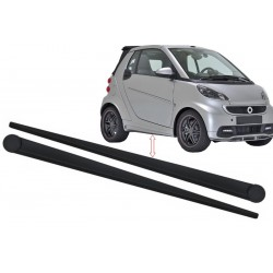 Moulding ForTwo 451
