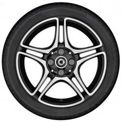 Cerchio anteriore a 5 doppie razze (16) 453