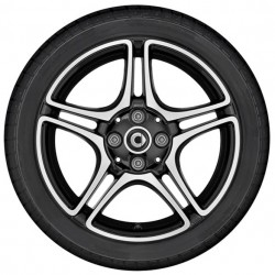 5-twin-spoke wheel ForTwo 453
