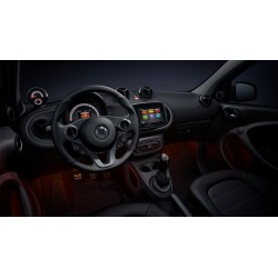 Luci soffuse ForFour 453